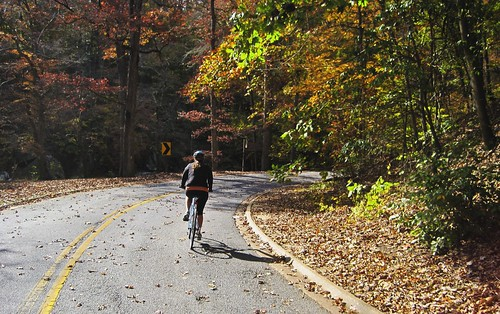 cycling in Rock Creek Park (by: Rebecca Schley, creative commons license)