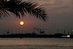 Great Vision Sunset (Shahbaz Hussain's Photography) Tags: city light sunset sea sky brown white black color reflection art love water colors night lens lights nice nikon focus niceshot with view image great royal vision arab falcon shutter inside kuwait 18200 shah hussain d300 shahbaz flickraward ringexcellence musictomyeyeslevel1