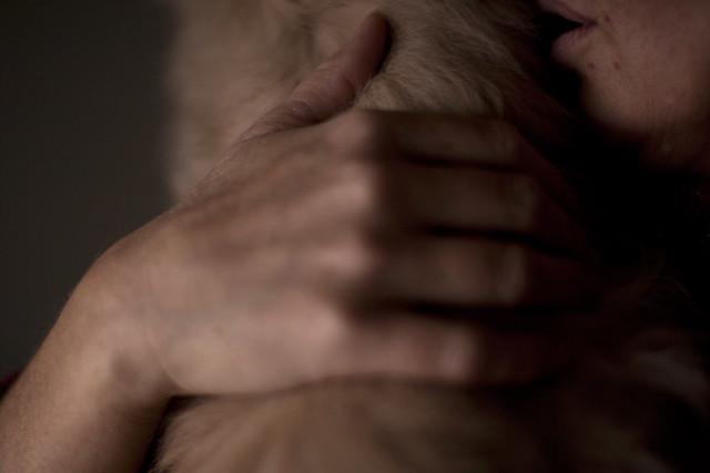 kattehånd
