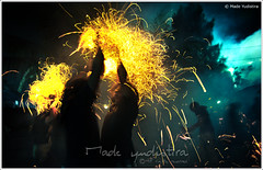 Coconut Fire Fighting (myudistira) Tags: bali work fire photographer culture api attraction freelance adat budaya balinese fotografer unik perang yudis myudistira madeyudistira yudist