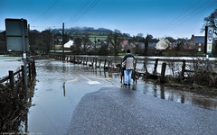 I don't think we will be going for a walk this morning ! (Neil. Moralee) Tags: england dog man water river flood walk culm hemyock neilmoralee