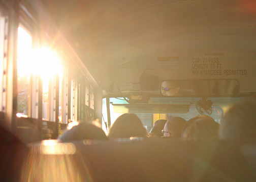 web sun in bus