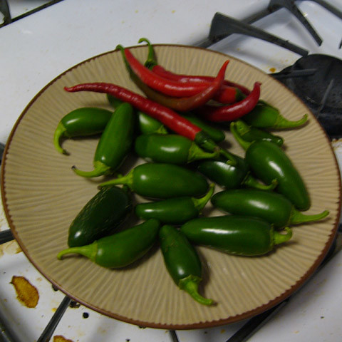 060913_peppers