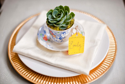 eco gifts: {tea cup} succulent wedding favors tutorial