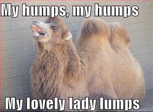 lady-lumps