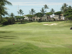 WAIKELE COUNTRY CLUB 179