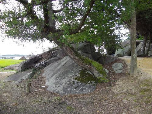 岩倉神社 #11