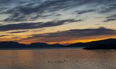 Midnight in Alta, Nord Norwey (Isabella Pirastu) Tags: sun norge niceshot midnight alta norvegia norwey mygearandme