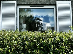 Lonely in the Land of Kitsch (Paul..Andrews) Tags: street windows suburbia kitsch bust hedge lonely spnp streetphotographynowproject instruction51