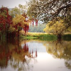 On the river Naab ~ (rotraud_71) Tags: trees water reflections bavaria september topshots pielenhofen idream abigfave rivernaab scenicsnotjustlandscapes natureselegantshots blinkagain