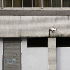(Yermaaaaaaaaaaaaaaaaaaaaaaaaaaaaaaaaaaaaaaaaaaaaaa) Tags: door ireland urban abstract broken window wall graffiti decay no belfast cctv tagged shutters northernireland yermaaaaa