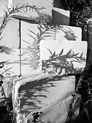 Foto_21.9.11-27 (Churechawa) Tags: original light shadow stilllife abstract art texture strange modern composition project creativity photography photo artist moody view prague artistic contemporary crossprocess fine creative picture poetic mind reality fujifilm lovely elegant delicate author graceful epic mystic stylish pictorial imaginative mastery lyric digitalfilm harmonious pleasing exr inventiveness f70exr eligiac