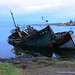 Salen Bay, Isle Of Mull. Old Fishing Boat Wrecks