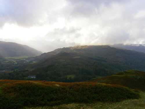 Lingmoor from Loughrigg