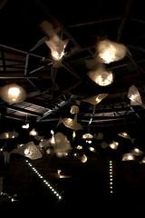 Lichtergartenfest (Itsi Bitsi) Tags: light fish aquarium fest papier lampions trier lichter lampen fische leuchten canoneos450d itsibitsi weidengeflecht selinachrist petrispark lichtergartenfest