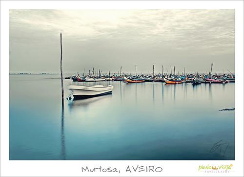 Murtosa, AVEIRO by Paulo Veiga Photo