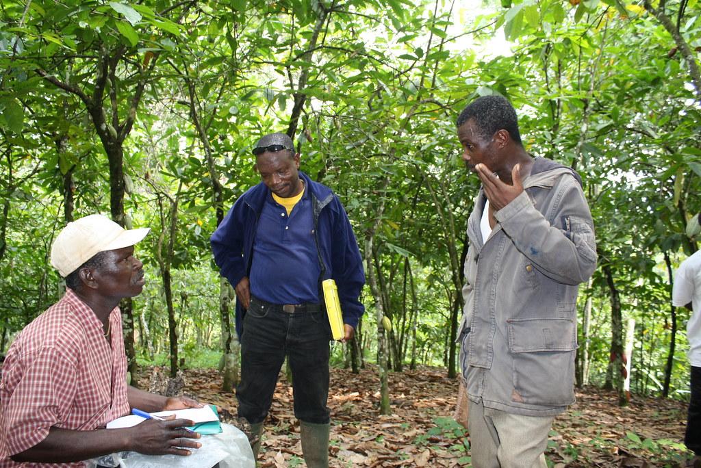 Inspection interne cacao bio Togo 3