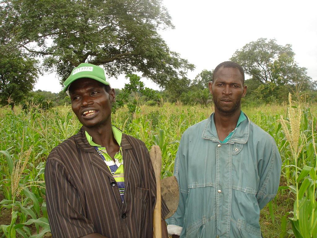 Deux paysans devant un champ école Togo