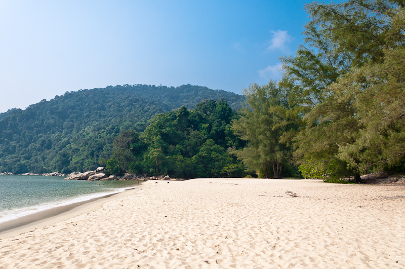 Turtle Beach @ Penang National Park