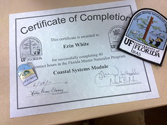 One down, two to go - the certificate I earned in June!