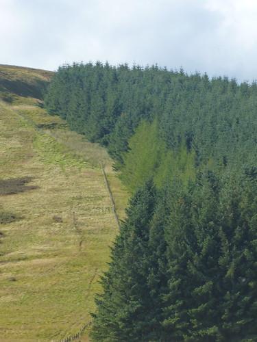 england scotland border