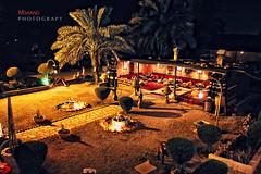 safari .. (M3aand) Tags: old tree coffee night chair desert tent palm arabic safari soil backgammon ksa