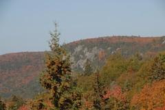 DSD_7715 (Greying_Geezer) Tags: autumn ontario canada fall colors colours scenic trains autumncolours railways railroads saultstemarie on algoma agawacanyon traintour