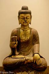 Calmness, Tranquility, Niravana.....Buddha! (_Viky_) Tags: statue peace nirvana buddha bangalore tranquility calm idol meditation tranquil calmness goldenbuddha 500d showpiece canonef50mmf14 goldenhue whitefiled t1i fortunetrinity decorativeitemcanon