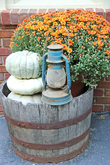 blue lantern, pumpkins and fall mums