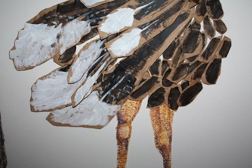 Ostrich (up close)