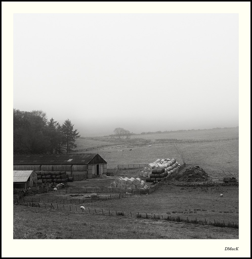 Newhill Farm