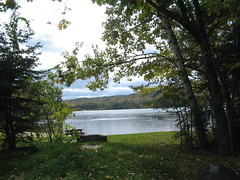 Around Webster Lake, W. Franklin, NH (catchesthelight) Tags: fall autumn leaves trees plants flora colors colourful light blue sky orange yellow beauty nh itsmulticolored fallfoliagephotography fallfoliage green water geese franklinnh websterlake