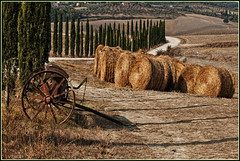 Rural Tuscany (carlo tardani) Tags: landscape colore campagna siena toscana colline ambiente rotoballe cipressi villedicorsano nikond300 aratrice doubleniceshot mygearandme flickrstruereflection1 flickrstruereflection2 flickrstruereflection3 flickrstruereflection4 flickrstruereflection5 flickrstruereflection6 flickrstruereflection7 settembre2012challengewinnercontest