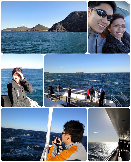 Sydney 2011 - Whale Watching Cruise