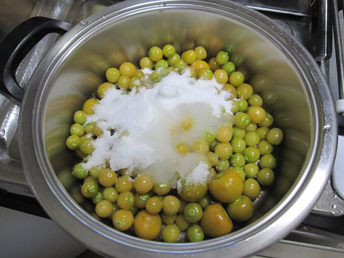 砂糖と白ワインを加えたほおずき 2011年9月11日 by Poran111