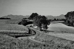 Point of View / Ansichtssache (Tinina67) Tags: bw france landscape view tina sw pyrenees ansicht gers pregamewinner