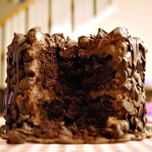 chocolate wasted cake cross section