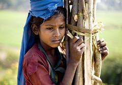 Shy (PawelBienkowski) Tags: india women shy mountabu rajasthan tribals indiawoman indiatribe lifeinindia tribalsofindia garasia rualrajasthan