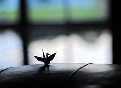 Wings (Ting Hay) Tags: light window silhouette origami papercrane inthehouse rectoverso backtoheavenslight