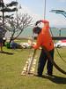DSC02910 (Perc Tucker Regional Gallery) Tags: install 2011 strandephemera perctuckerregionalgallery