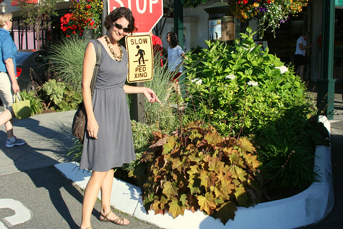 andrea and the giant heuchera
