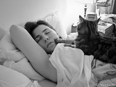 22:22 (Max Luchi) Tags: sleeping bw cats cat artistic sleep bn elena coolpix trudi 3500 concorsi