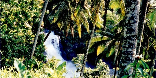 Samoa - Falefa falls