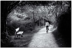 (Antonio Carrillo (Ancalop)) Tags: parque trees espaa man art bike del canon de geotagged la spain europa europe arboles camino mark 14 banco cruz ii bici 5d mm lopez antonio 50 marques fuentes hombre carrillo caravaca murccia ancalop