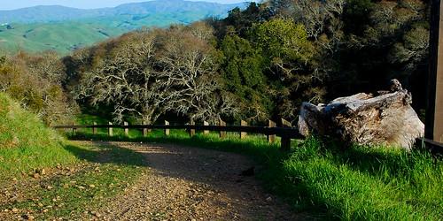 Trail (2x1)