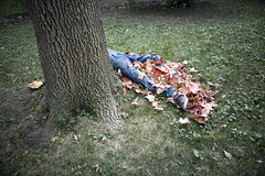 (257/358) (epine) Tags: life trees boy red brown fall me its grass leaves yellow self canon out dead photography evening is amazing cool shoes day thomas album bored like down yay running tags boom artsy tired be buy his what l 24 28 giles bryant 70 died motherfucker laying scannell strands colorsgreen epione