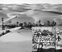 egyptian oasis (FARO LAND) Tags: faro graffiti egypt