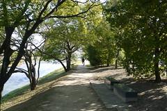Cycling along the Kamo River