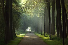 lightrunner (Zino2009 (bob van den berg)) Tags: trees light sunlight mist nature bomen alone nebel zoom herfst foggy sunny september single runner bos depth zon jogger deventer sunbeams fietspad perpective tamron70300 allein hardloper zino2009 bobphotography