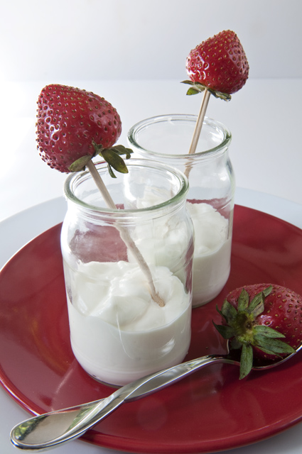 Raw Whole MIlk Yogurt-14 post red 2